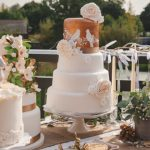 Rich Beauty Inspire Feather Wedding Cake